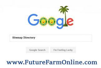 بهترین روش افزایش رتبه سایت در گوگل